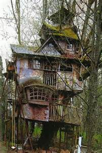 awesome tree houses tree houses photos