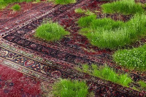 grown green rugs a temporary lawn planted amongst a patchwork of rugs colossal