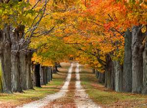 in color nj kaleidoscope of autumn colors is heaven on earth 46 pics