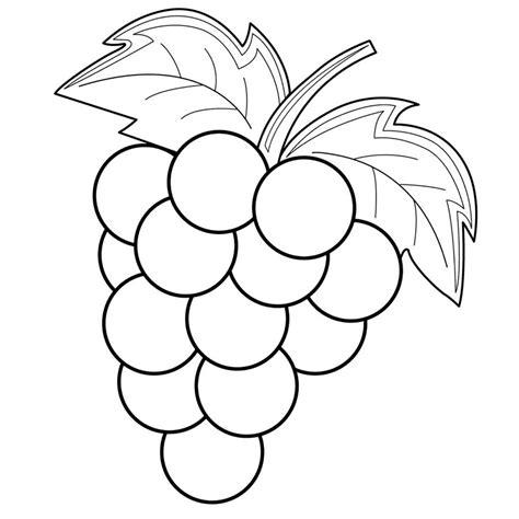 imagenes de uvas a color para imprimir gambar mewarnai buah buahan