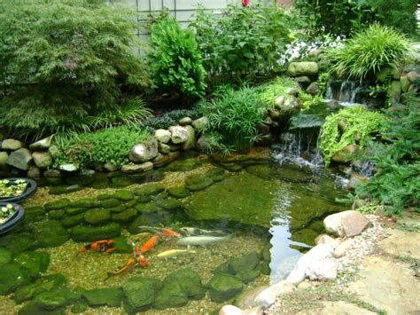 koi ponds don t need to look like black liner pools landscaping my nashville home