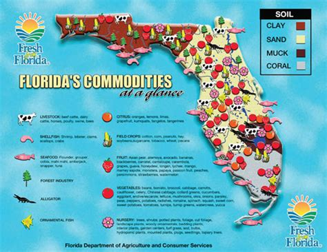 agricultural map of florida florida history notebook simplebooklet