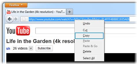 Download Mp3 Link | how to download entire youtube playlist in mp3 4k download