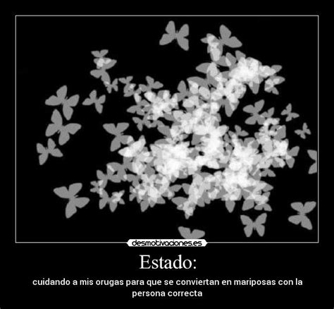 imagenes mariposas goticas imagenes de mariposas negras goticas imagui
