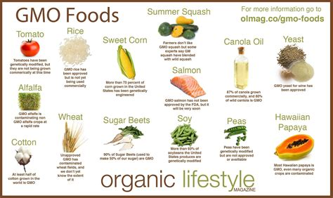 Gm Detox Diet Disadvantages by Understanding And Detoxifying Genetically Modified Foods