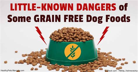 food without grain should you feed your pet grain free or not