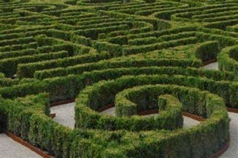 videoclub el jardin el laberinto de borges est 225 en venecia cultura elmundo es