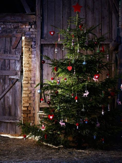 christmas tree in a barn christmas the other holiday