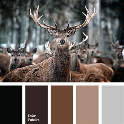 30 receiving color palettes inspired by animals you can actually use hobby lesson
