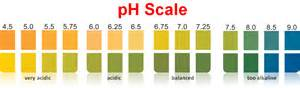 ph paper colors rapid urine ph test high quality low price ph paper
