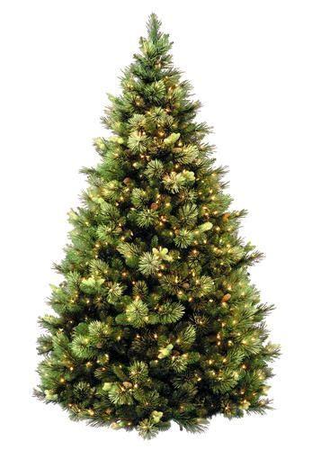 menards colorado flocked pine 7 5 pre lit carolina pine hinged tree at menards 299 99 trees