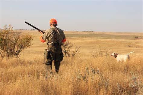 how to a to bird hunt saskatchewan bird hunts