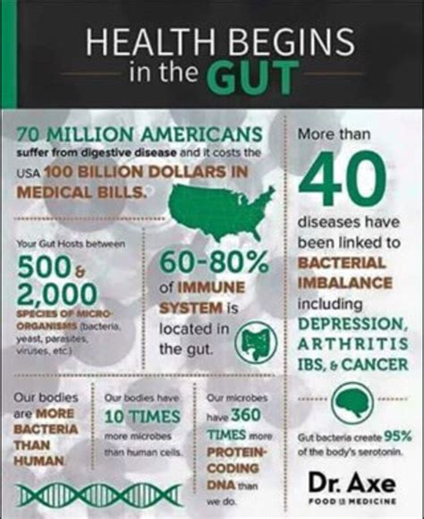 Plexus Triplex Detox Symptoms by Health Starts In The Gut Plexus Triplex Helps You Get And
