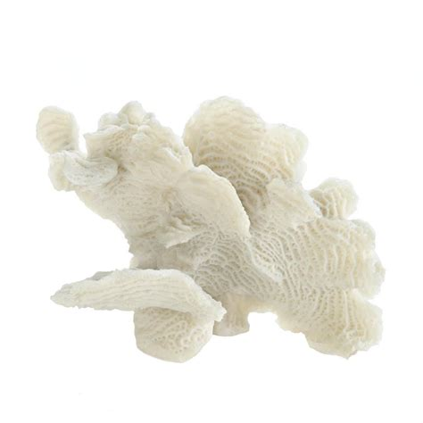 white coral home decor large white coral tabletop decor wholesale at koehler home