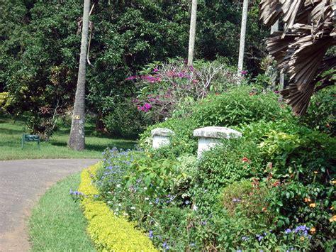 Kandy Botanical Gardens Peradeniya Botanic Gardens