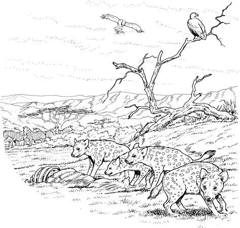 Free Hyena Coloring Pages Hyena Coloring Pages