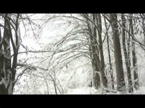 claudine longet girl from ipanema claudine longet snow 1968 doovi