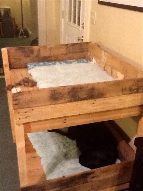 diy pet bunk bed plans  build dog bed pallet