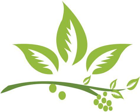 Herbal De Nature oem franchise herbal hair care