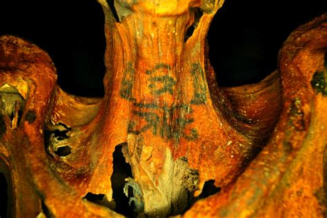 film up significato mumie mit aufw 228 ndigen tattoos in deir el medina