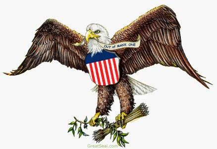 The Bald Eagle American Symbols memoirs from nam american symbols of freedom