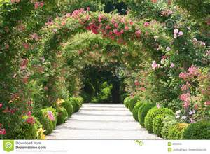 rose garden landscape stock photo image 2622350