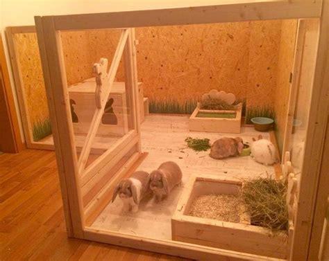 gabbia per conigli fai da te casette conigli fai da te la sistemazione in casa