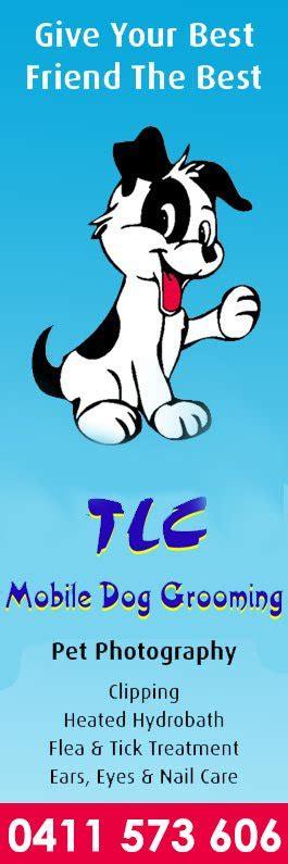tlc grooming tlc mobile grooming cat clipping grooming carrara