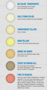 health check what your and poo colour says about your