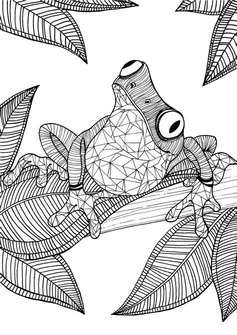 free coloring pages for adults best 25 colouring pages ideas on free