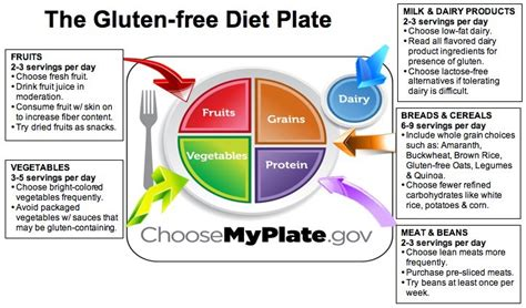 eat dairy free your essential cookbook for everyday meals snacks and books results of gluten free diet day program