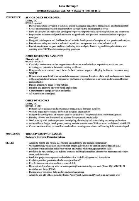 Obiee Developer Sle Resume by Obiee Developer Resume Sles Velvet
