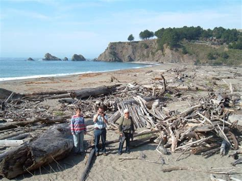 mendocino coast rental vacation rental quiet meadow cottage on mendocino coast