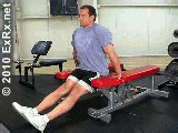 bench dips chest chest dip between benches