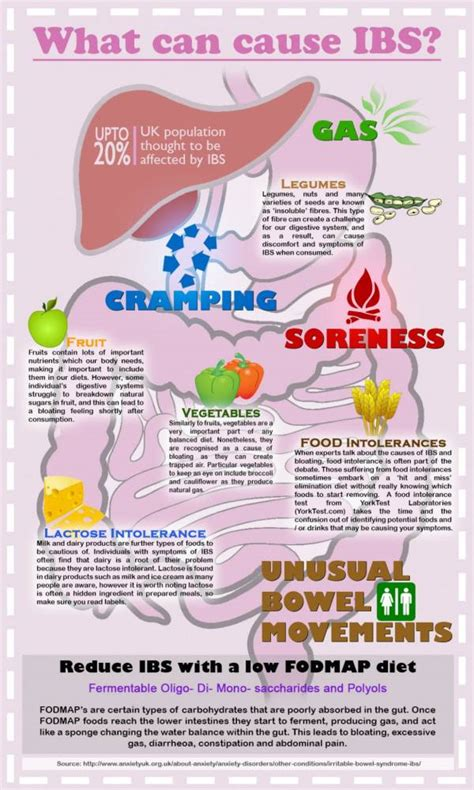 Undigested Food In Stool Ibs by What Are The Best Probiotic Supplements For Ibs