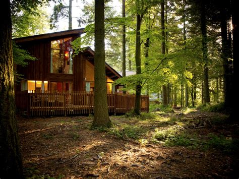 Wooden Log Cabins Holidays by A Forest With A 3 Year And A 1 Year