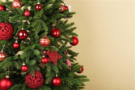 tip of the week keeping christmas trees fresh
