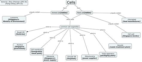 concept map cell nucleus cell organelles analogy cmap
