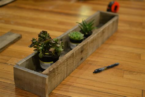 window sill planter indoor windowsill succulent garden little paths so startled