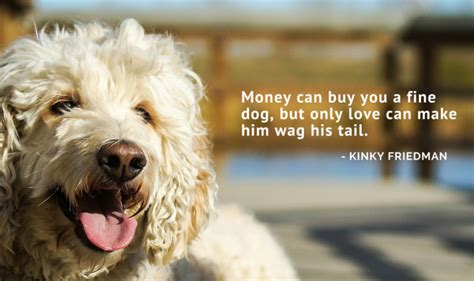 selling without galleries toward a living from your books 75 of the best inspired quotes puppy leaks