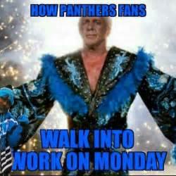 Carolina Panthers Memes - carolina panthers football memes funny best photos