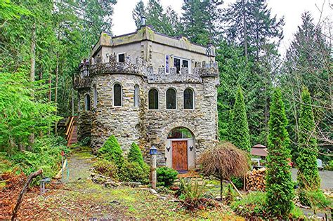 a forest castle in washington state house