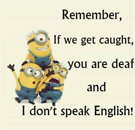 minion quotes top 10 minions friendship quotes