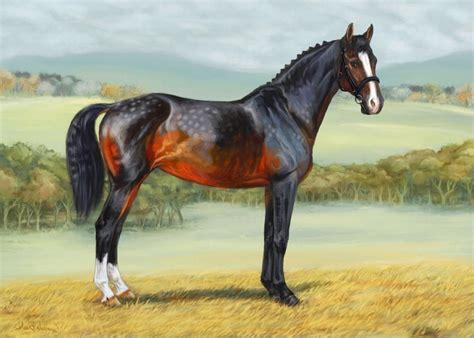 colores de cabellos bonitos cuadros modernos pinturas y dibujos hermosos caballos