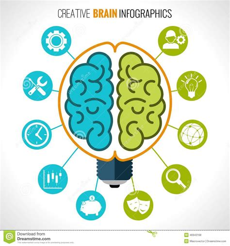 infographic the psychology of graphics bigstock blog creative brain infographics stock vector image 46943168