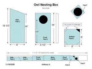 Barn Owl Box Plans Screech Owl House Plans How To Build A Screech Owl Box