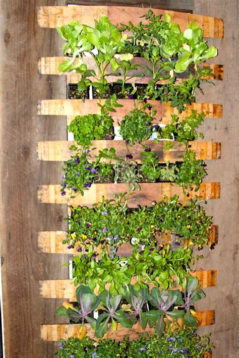 vertical garden plans excellent idea garden ideas pinterest