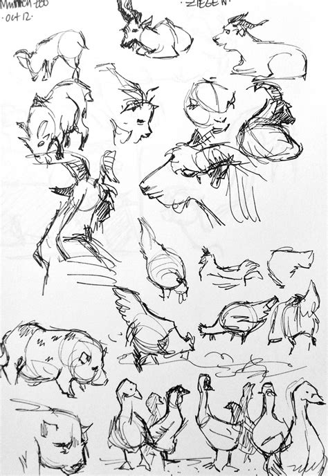 Drawing Zoo by Drawings Zoo Animals Emily Bee