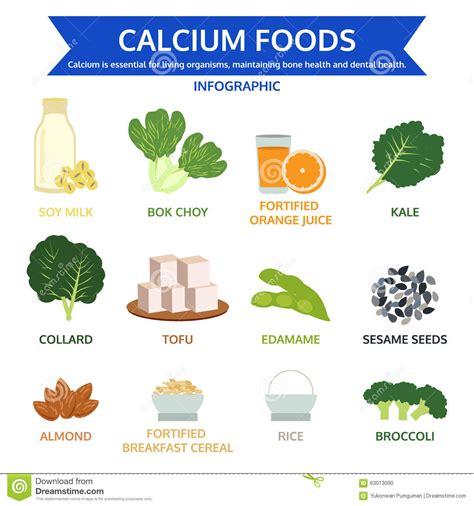 fruits w calcium calcium foods food info graphic icon vector stock vector