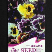 Benih Semangka Palguna 10 Gr jual benih labu golden f1 10 gram murah bibitbunga